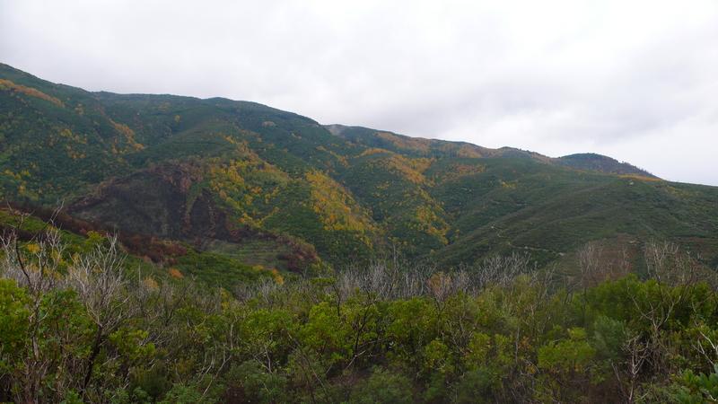 L'autunno ad isca sullo jonio